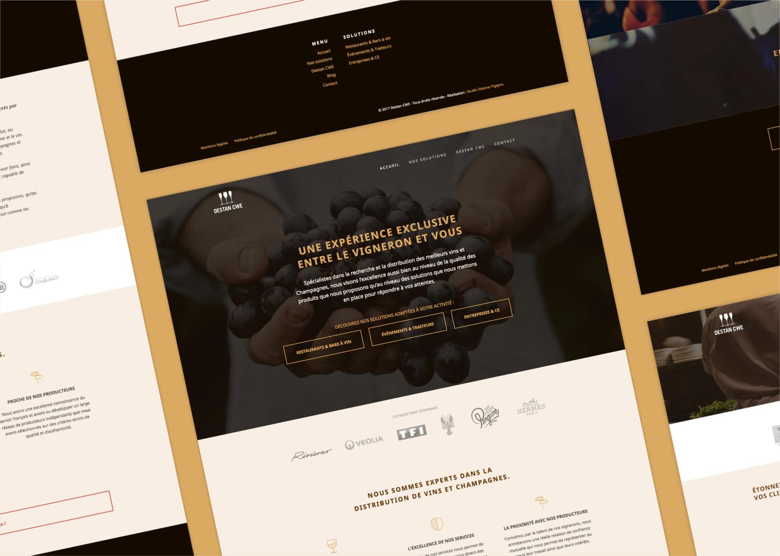 Quelques pages du site web de Destan réalisé par le Studio DPE