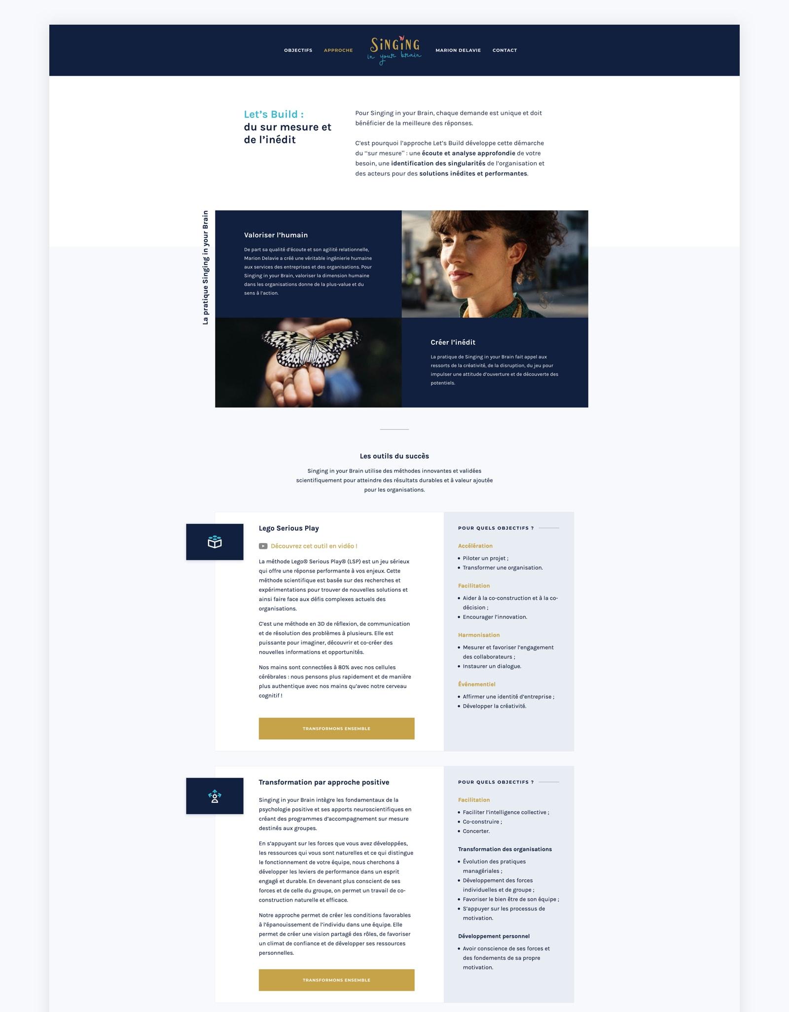 Page approche sur la refonte du site web de Singing in your Brain