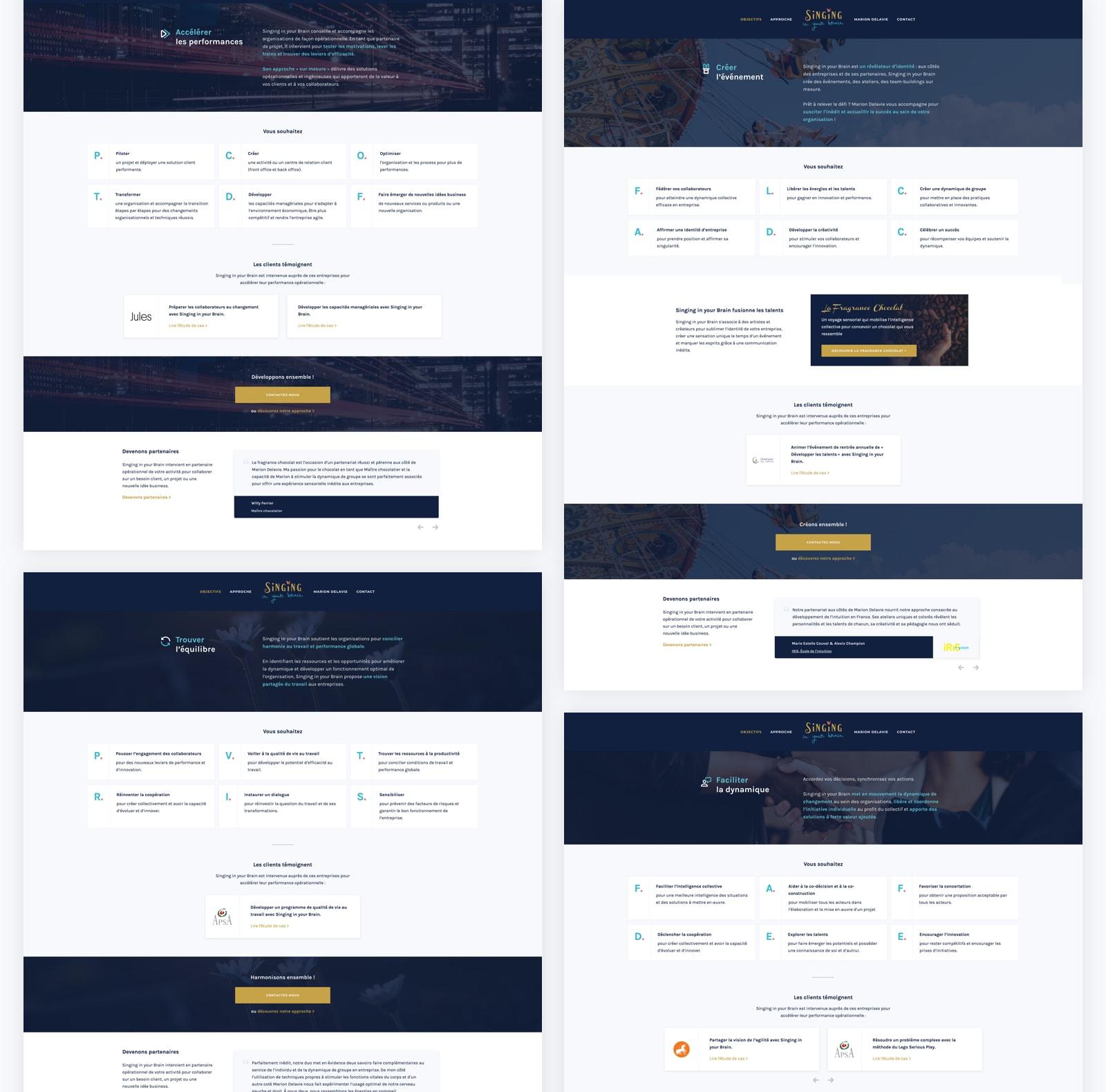 Pages objectif sur la refonte du site web de Singing in your Brain